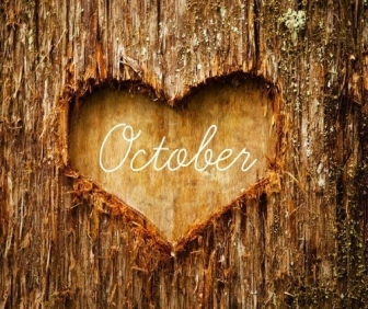 autumn-awesome-beautiful-birthday-Favim.com-1105696